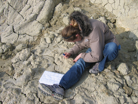 Lucinda Shepherd uses a steel point to extract a fossil at Alum Bay