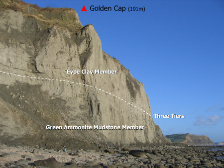 Golden Cap Geology diagram at Charmouth