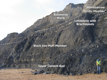 Geology diagram of Charmouth cliffs