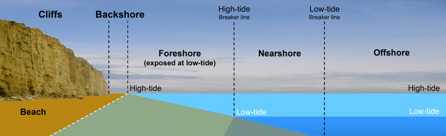 Beach diagram showing foreshore backshore nearshore and offshore
