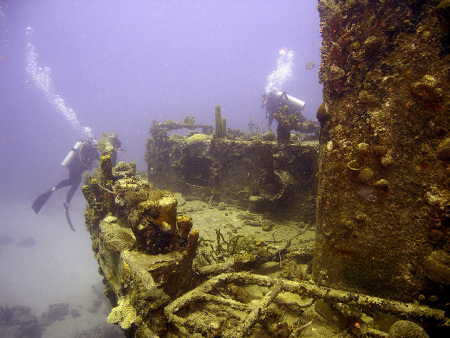 Divers explore a heavily encrusted ship wreck
