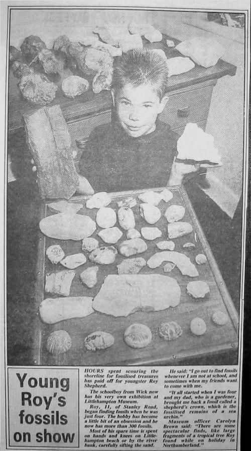 Roy Shepherd fossil collection Littlehampton Gazette newspaper cutting