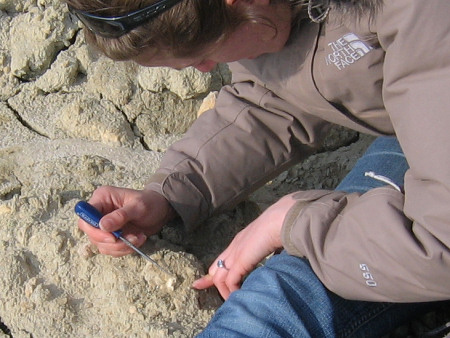 Lucinda Shepherd uses a steel point to extract a fossil