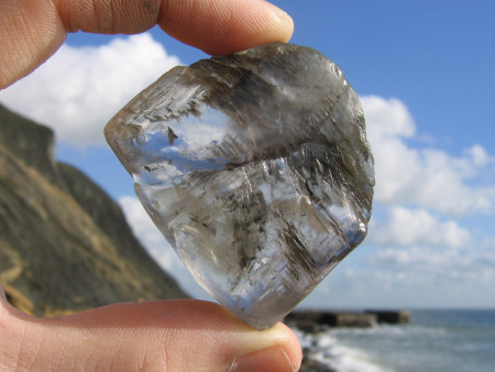 Gypsum crystal at Folkestone