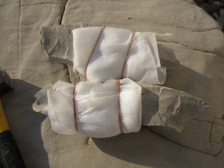 Foam wrap to protect fossils