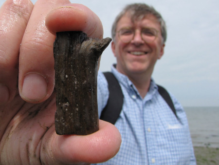 John Fowler with a fossil twig at Herne Bay