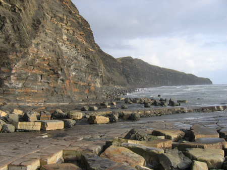 Upper Kimmeridge Clay exposed in the cliffs towards Chapman's Pool