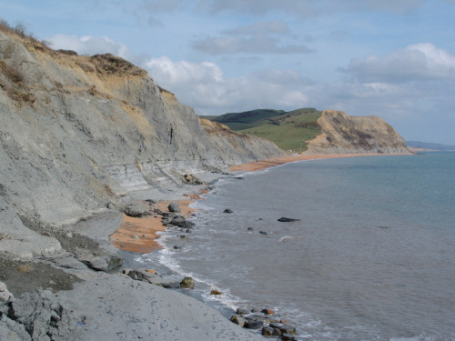 Seatown cliffs and foreshore