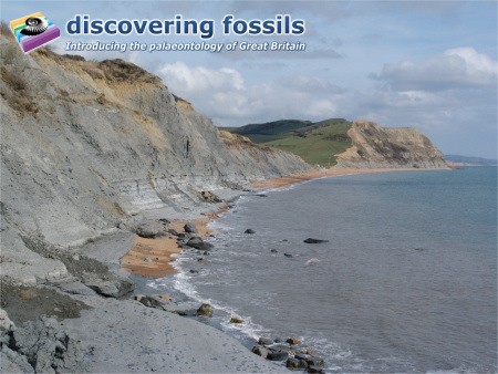 Jurassic Coast at Seatown wallpaper