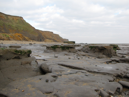 London Clay Formation exposed on the foreshore at Walton-on-the-Naze