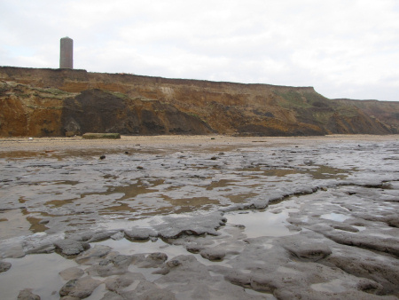 The London Clay Formation visible in the cliff-face and on the foreshore